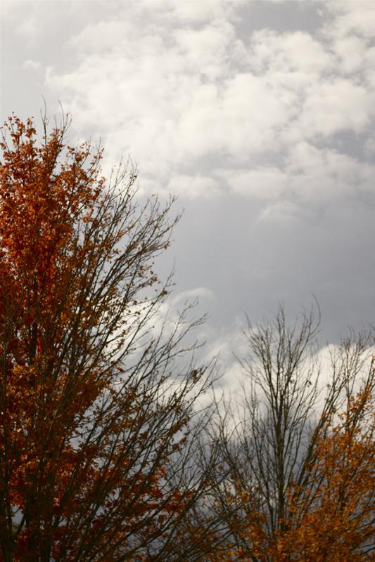 autumn13