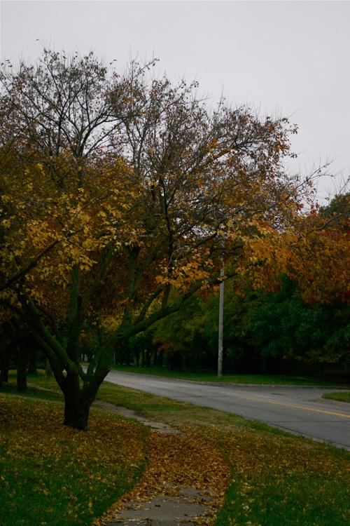 autumn13u